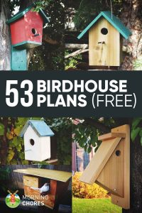 50 casas de pájaros diy hecho a mano